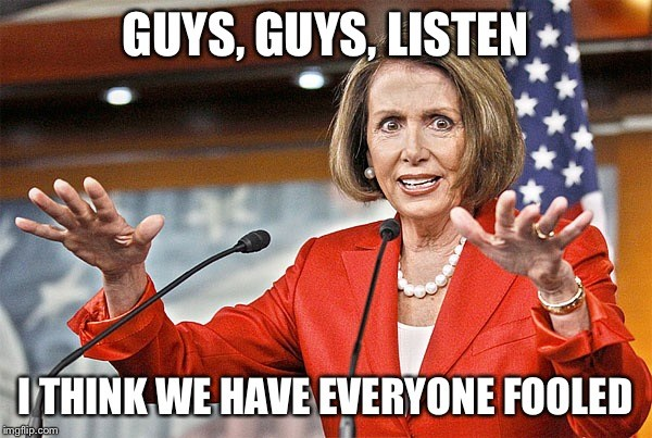 Once and Future House Speaker Nancy Pelosi (D-CA) says,